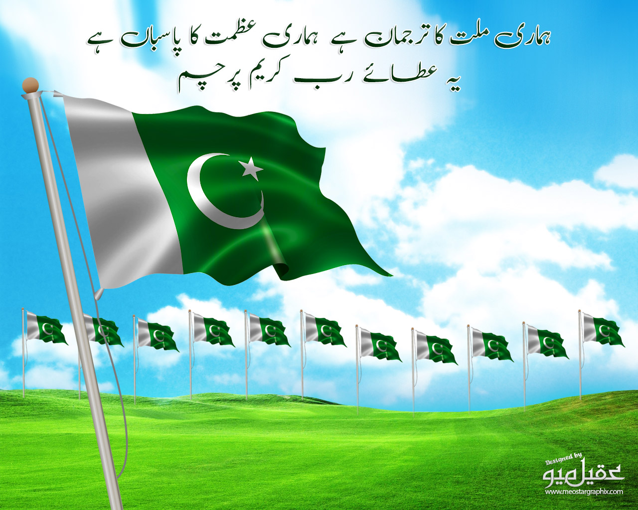 Pakistan 14 August_Flag