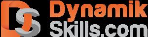 Dynamik SKills
